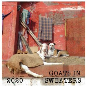 sweatered goats calendar
